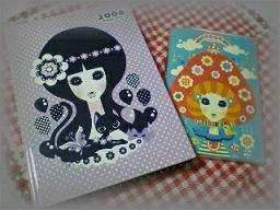 *diary 2008*